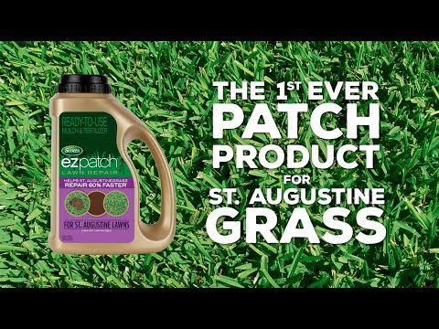 How to repair St. Augustine Grass with Scotts® EZ Patch