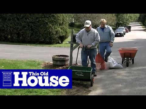 How to Remove Crabgrass | This Old House