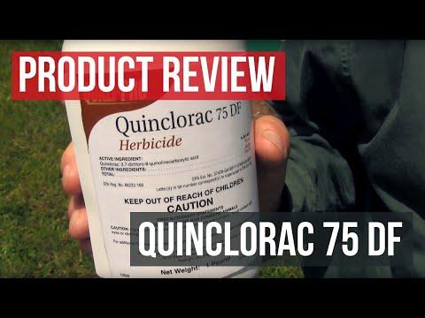 Quinclorac 75DF Crabgrass Herbicide (Solutions Stores)