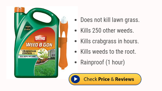 Best crabgrass killer - Ortho Weed B Gon
