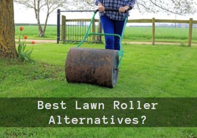 Best Lawn Roller Alternatives