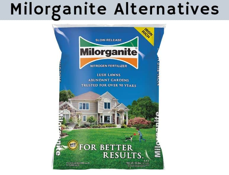 Milorganite Alternative
