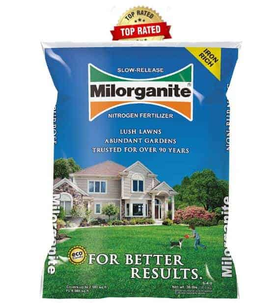 Best Fertilizer for Bermuda grass - Milorganite Organic Fertilizer