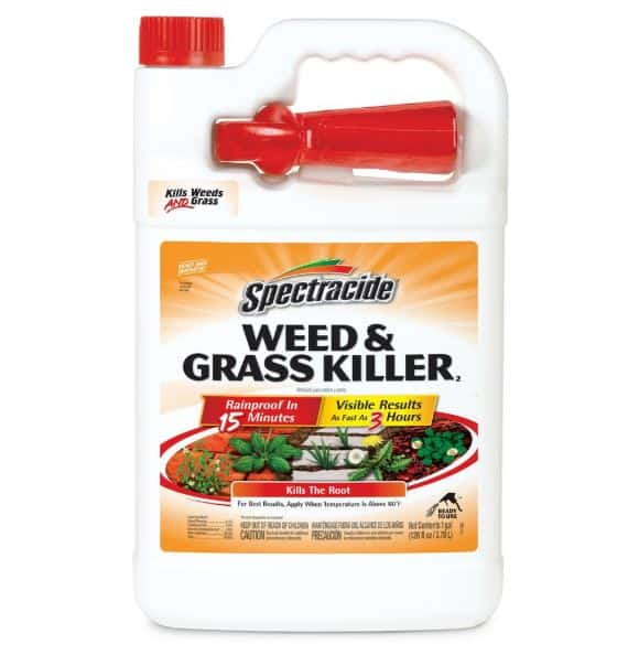 Best grass weed killer for lawns - Spectracide