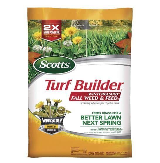 Scotts weed and feed for Floratam st augustine grass in winter