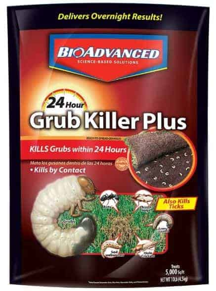 Best Grub Killer - Bioadvanced Grub Killer 700740M 24 hrs