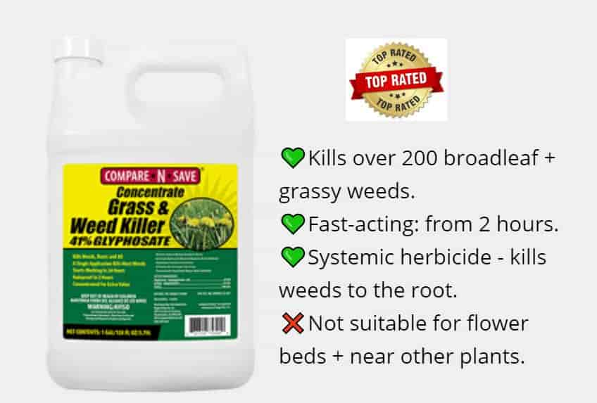 Best Weed Killer for Lawns - Compare N Save Top Rated Concentrate
