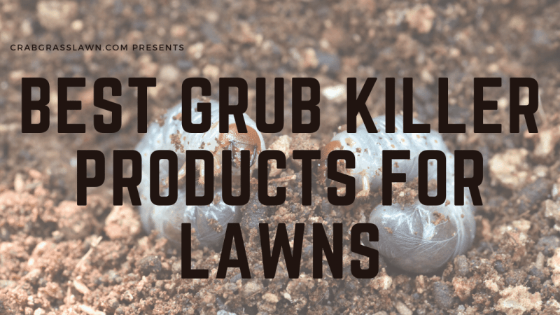 best grub killer granuals for lawns e1592945229101