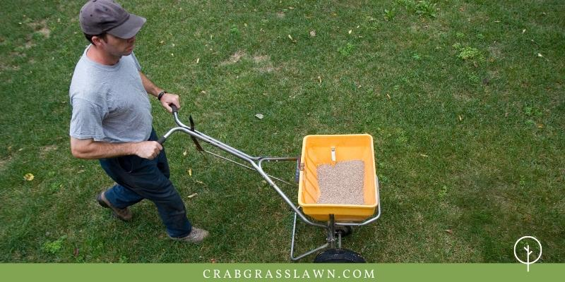 how to fertilize a yard
