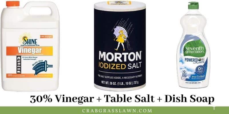 vinegar weed killer formula
