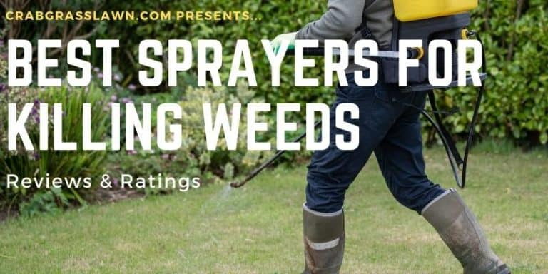 best weed killer sprayers