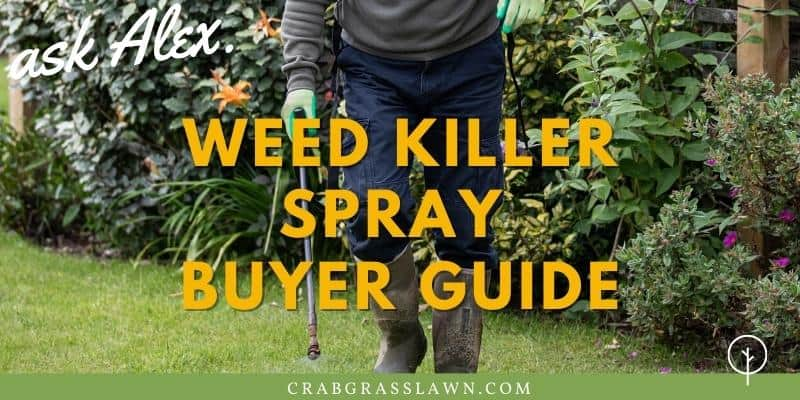 weed killer spray buyer guide