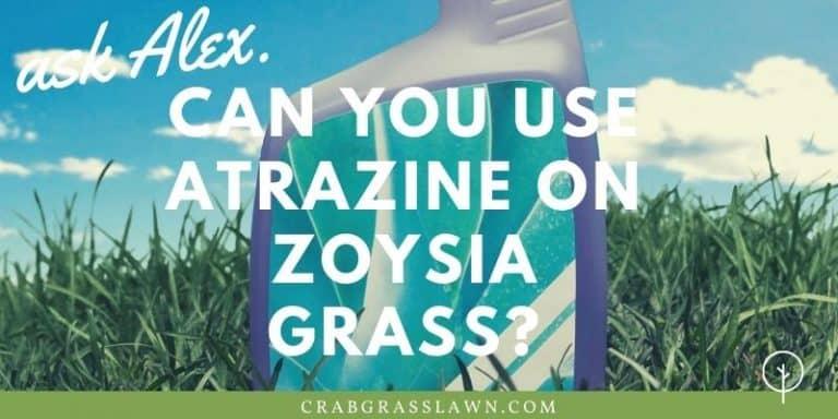 Can You Use Atrazine on Zoysia Grass?